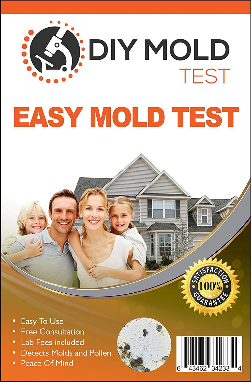 DIY Mold Test Kit